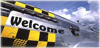 Welcome to Nose Art